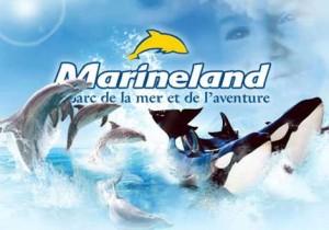 mariland-antibes